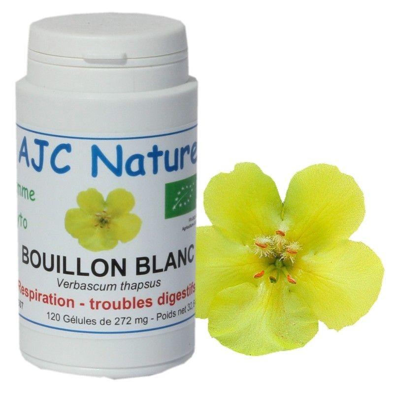 GELULES BOUILLON BLANC