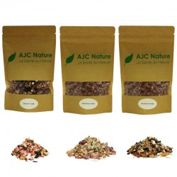 Pack Infusions aux fruits bio