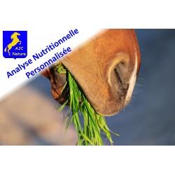 ANP cheval