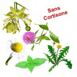 ANTI-DÉMANGEAISONS DERMITE ESTIVALE (Plantes) | Cheval