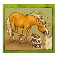 AIDE RESPIRATOIRE Huile | Cheval