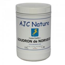 GOUDRON DE NORVÈGE | Cheval