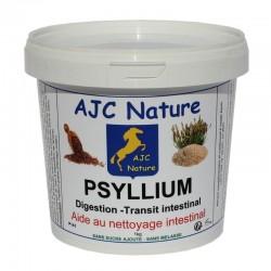 PSYLLIUM | Cheval