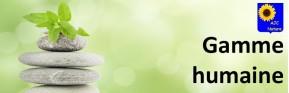 Gélules, thés et tisanes Bio et naturels pour votre santé - AJC Nature