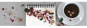 Bilan Naturopathique : Un point sur votre état de Santé | AJC Nature