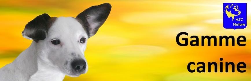 Soins naturels et plantes médicinales pour le chien  | AJC Nature