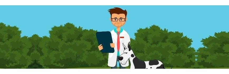 Dossiers, articles et conseils sur la vie du chien | AJC Nature