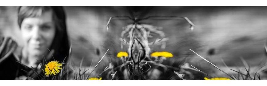 Drainage et Détox : Produits Naturels BIO | AJC Nature