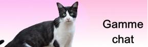 Soins naturels et plantes médicinales pour le chat  | AJC Nature