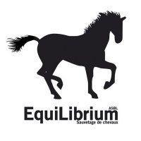 ASBL EQUILIBRIUM